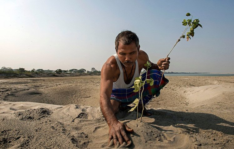 Jadav-Payeng-forest-man-photo