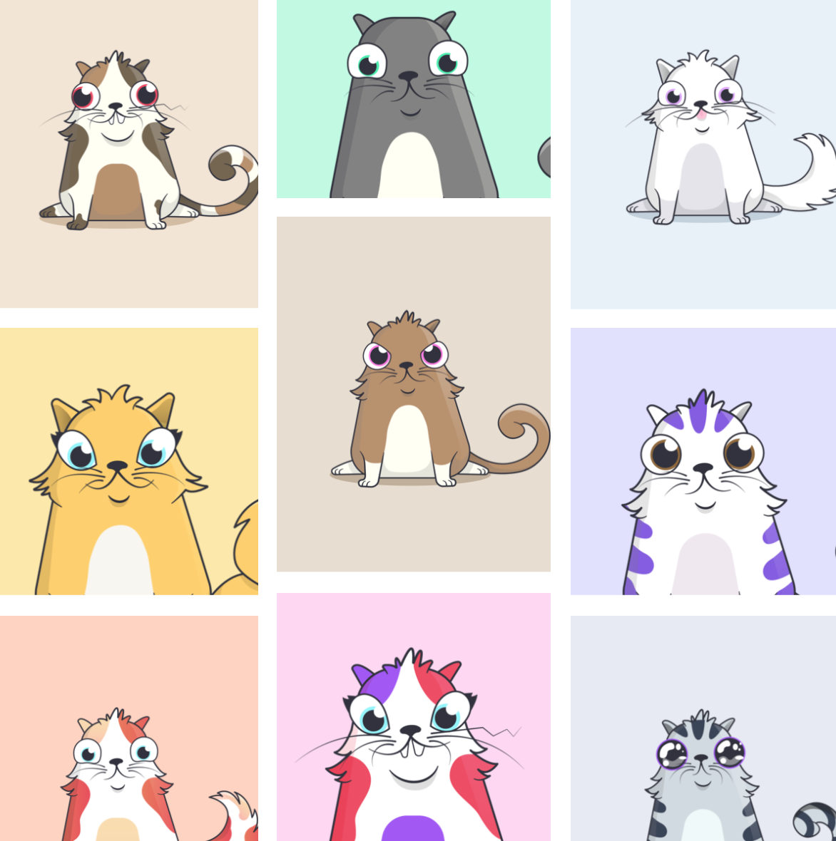 crypto-kitties-ethereum-cover-photo