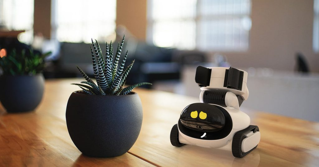 gomer-and-plant-robot-photo