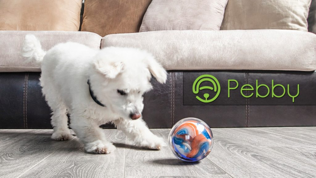 pebby-play-with-your-pet-remote-device-photo