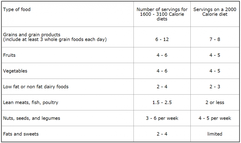 Xenadrine diet plan photo 10