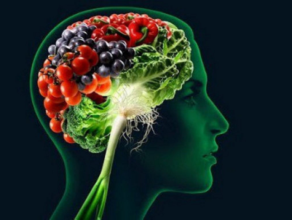 mind-diet-brain-photo