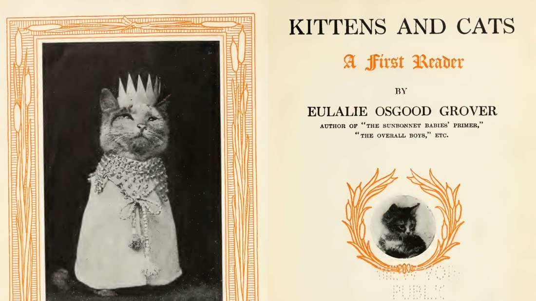 You Won't Believe! First LOLcat Meme Was Published in 1911 in School Book