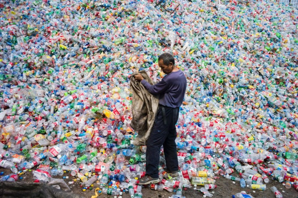Bye, Pollution Crisis! Scientists Accidentally Created Revolutional Enzyme that Eats Plastic
