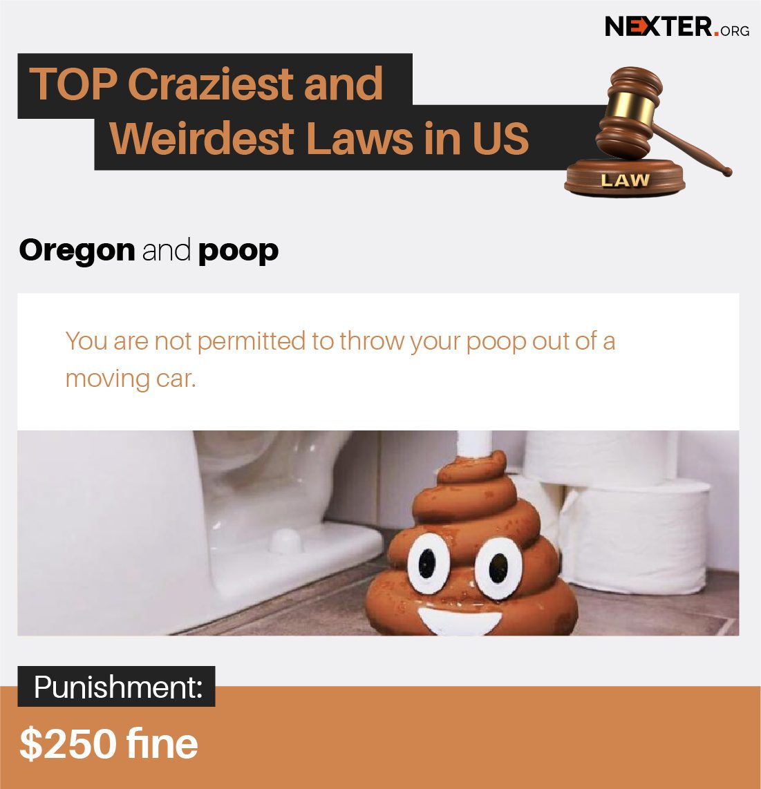 8 TOP Bizarre Laws in US - Are You Brave Enough to Throw Poop Out of Moving Car in Oregon? PART 3 (Infographics)