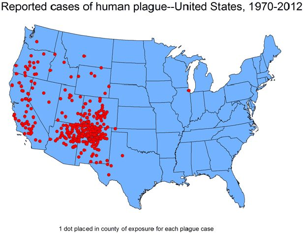 plague-idaho-map-pic