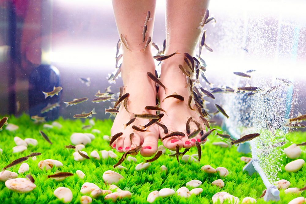 Woman Loses Toenails After Fish Pedicure - Check Out This and 5 Other Dangerous Beauty Treatments and Practices To Avoid