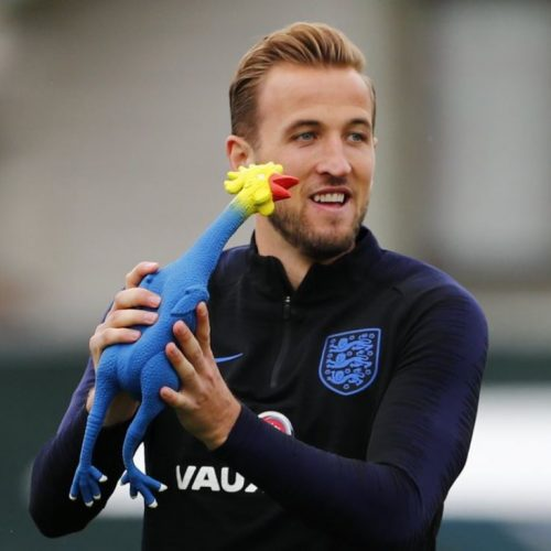 england-team-training-chicken-pic
