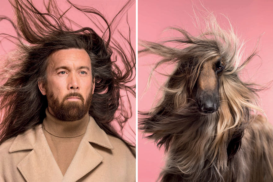 9 Amazing Pictures of Dogs And Owners Side by Side - Can You Even Spot the Difference?