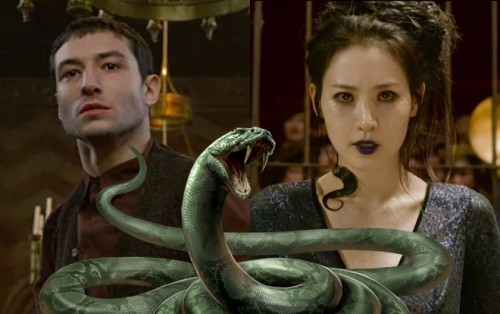 'Fantastic Beasts 2' - Scandalous Nagini Casting and 4 Other Things We Know So Far About Most Controversial Franchise (Final Trailer)