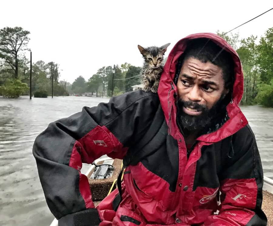 Nightmare of the Century: Hurricane Florence's Catastrophic Consequences in Photos and Videos