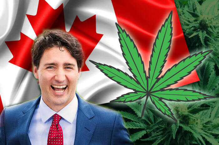 Recreational Marijuana Is Now Legal in Canada - Here Are Regulations and Limits You Need to Know
