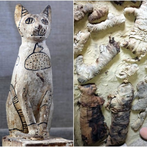 egypt-tombs-cats-mummies-pics