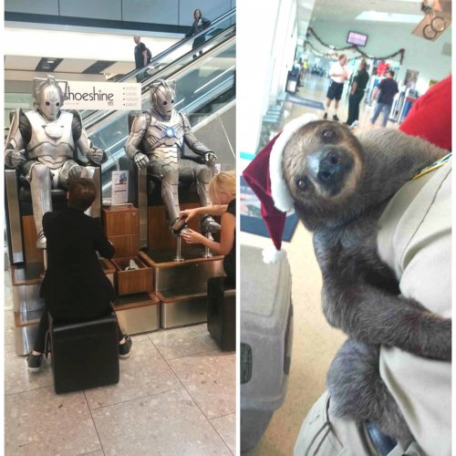 crazy-things-airport-pics