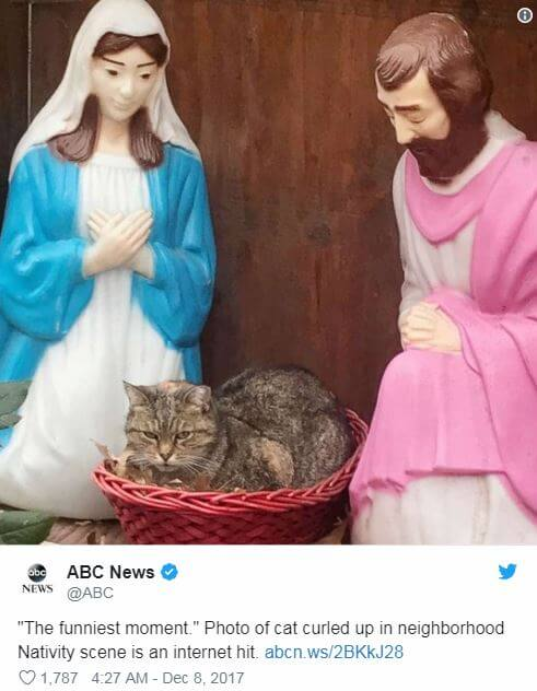 7 Funny Nativity Scenes to Meet Christmas in Good Mood - Hilarious AF! 7