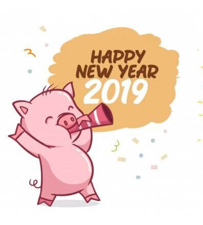 What the Year of Pig Prepared for You? Check the Predictions for 2019 Basing On You Chinese Zodiac Sign