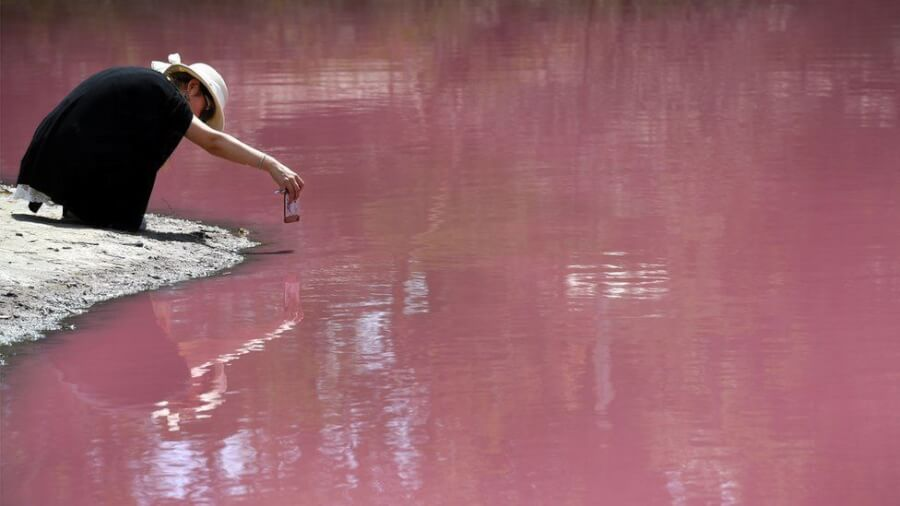 australia-pink-lake-beautiful-nature-photo
