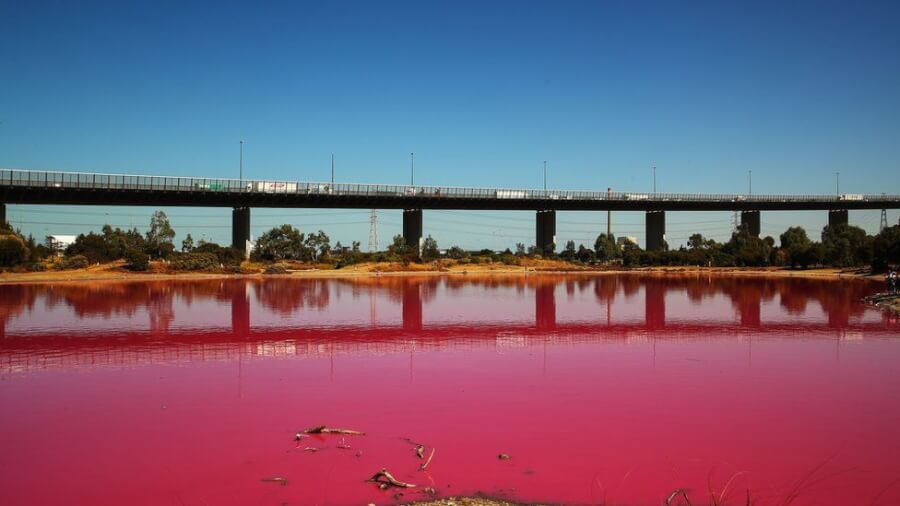OMG, The Most Instagrammed Pink Lake on Earth Found in Australia - Time to Visit Melbourne, Millennials!