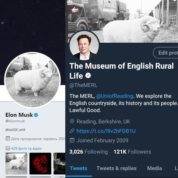 "What's Up, Elon: ""Absolute Unit"" Shots with Museum of English Rural Life, Musk Is Taunting Jeff Bezos + More"
