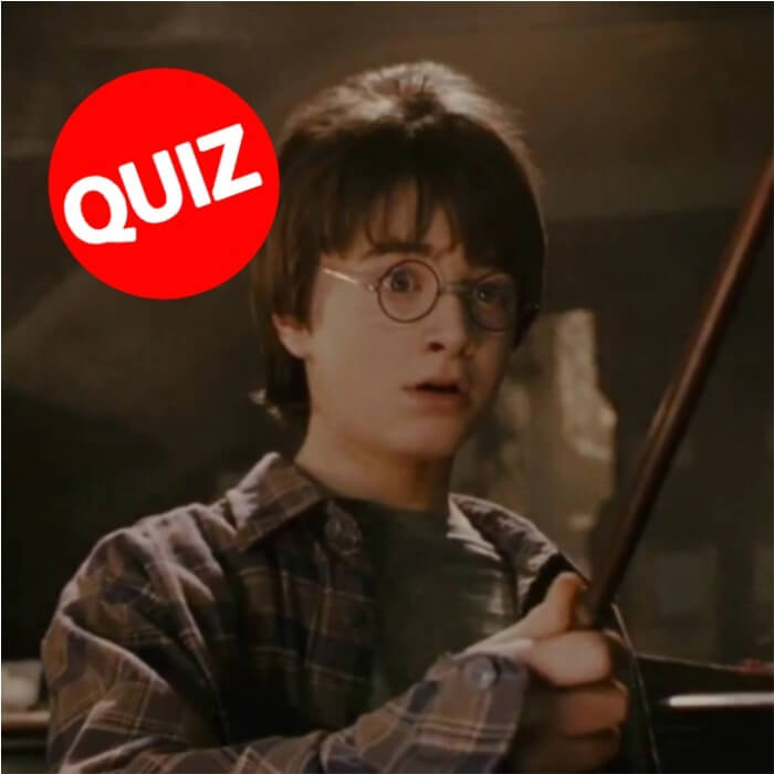 QUIZ: Which Harry Potter Wand Will You Get?
