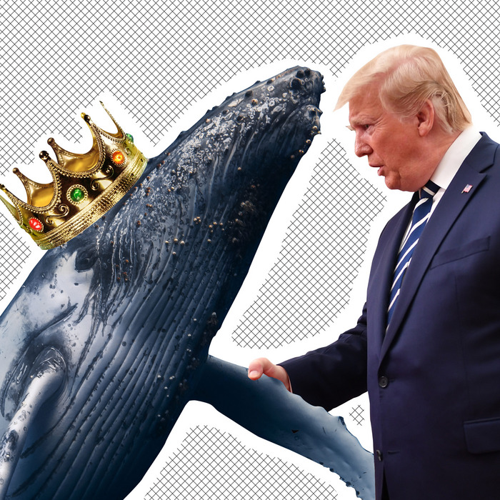 trump-fails-2019-prince-of-whales-photo