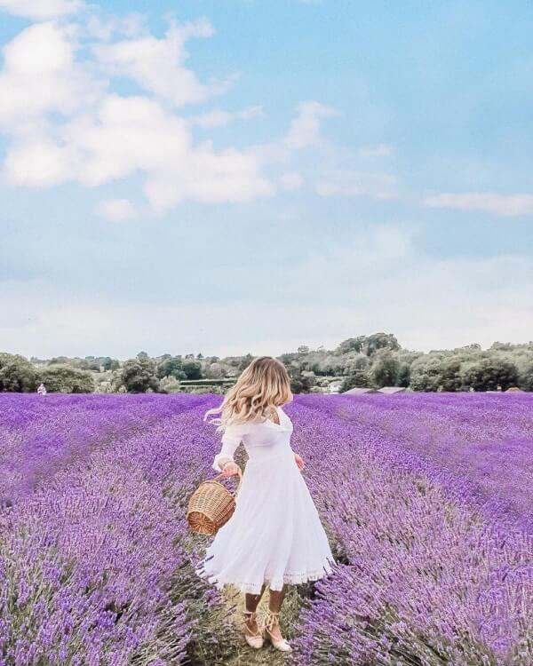 This Picturesque Lavender Field Is The UK's NEW Instagram Trend - See Stunning Pics