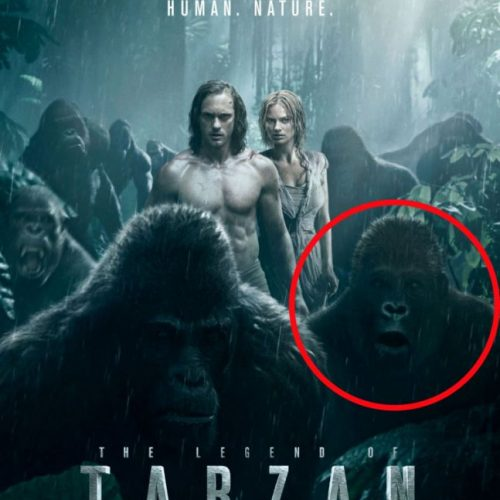 poster-fail-tarzan-photo