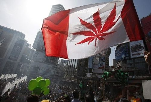 canada-cannabis-photo