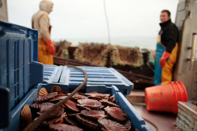scallop-wars-french-and-british-fisherman-pic1